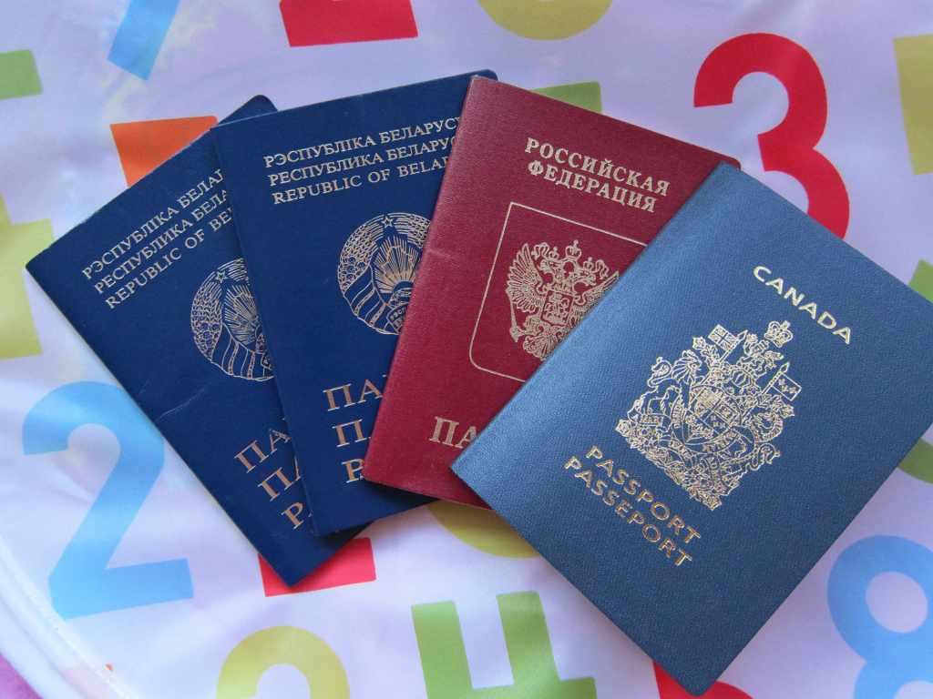 Уведомление о втором гражданстве в РФ в 2019 году
