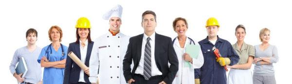 Сведения о трудовой деятельности