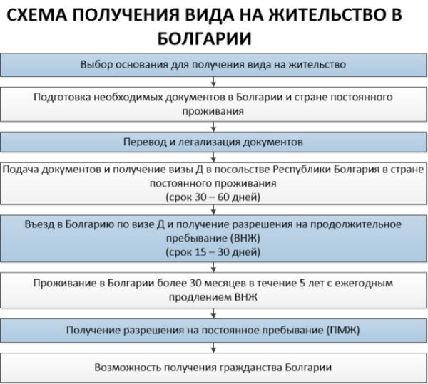 Схема получения ВНЖ
